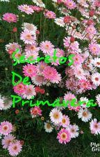 Secretos de Primavera. by writerchilensiz