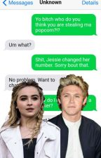 Texting Niall Horan??? by teen24_7