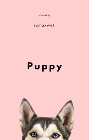 Puppy by samaxwell