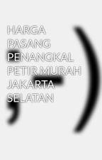 HARGA PASANG PENANGKAL PETIR MURAH JAKARTA SELATAN by putrabetawi1986