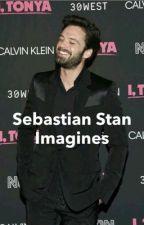 Sebastian Stan imagines || complete  by marvel-rhapsody
