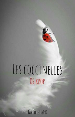 Les Coccinelles 🐞 [Stray Kids, Seventeen, B.A.P, BTS...] by TartifletteP90