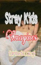 Stray Kids Imagines by fantastic_aegi
