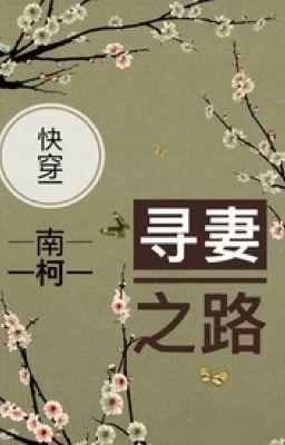 [Mau xuyên] Con đường tìm thê tử (Cao H) (1v1) - Nam Kha