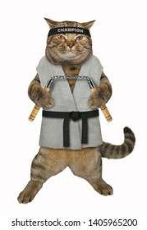 Artbook - Czyli jak marnuję sobie życie by kajtuq