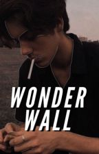 Wonderwall by abzzzurdah