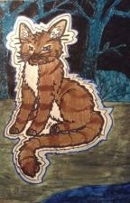 Hawkfrost X Reader (Female biased) by -NightStars-