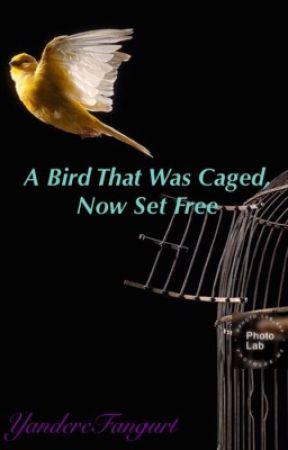 A Bird That Was Caged, Now Set Free by thatdepresseduwu