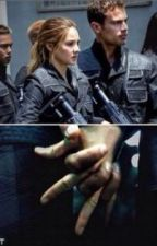 Life Without War (Divergent) by TributeInitiate