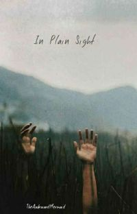 In Plain Sight (BoyxBoy) cover
