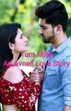 Tum Mille- An Avneil Love Story by itspooja
