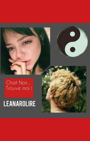 Chat Noir Trouve Moi... by _leanarolire_