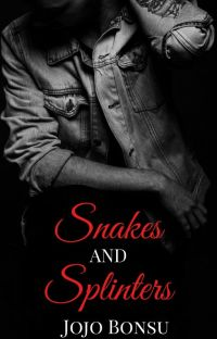 Snakes and Splinters [PUBLISHED] cover