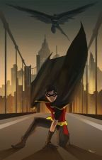 Secret Identity (A Young justice Fanfiction) by MolMcN
