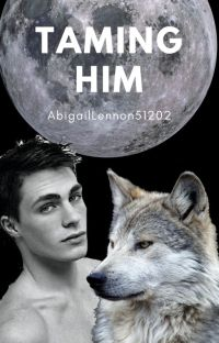 Taming Him (bxb) cover