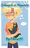 Solangelo at Hogwarts   ON HOLD   cover