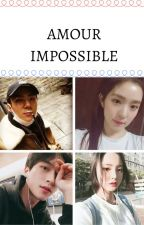 Amour Impossible [En Pause] by xoxo9133