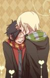 Lion And Veela Again (Drarry) cover