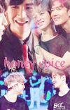 Honey Voice. cover