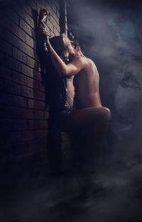 Fanfic Erotica cover