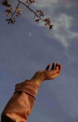 Đọc Truyện giấc mơ một đời đi tìm • matchatangerine - Truyen4U.Net