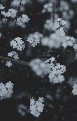 Đọc truyện tuyết đầu mùa;; yoongi