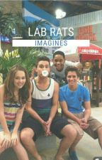 Lab Rats Imagines by The-Loyalists