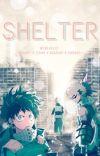 Shelter [Reader x Shouto Todoroki, Katsuki Bakugou, Izuku Midoriya] cover