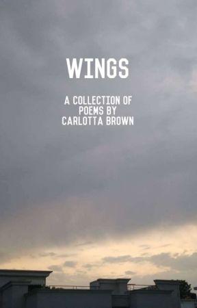 Wings by carlottabrown