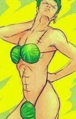 Đọc truyện Xả ảnh One Piece