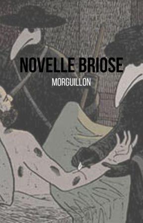 Novelle briose by Morguillon