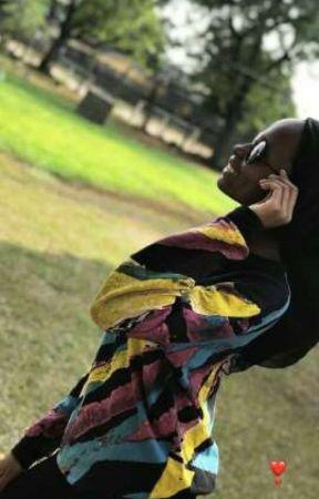 The Diary Of Lady Maryamaa by fulani_maryamaa