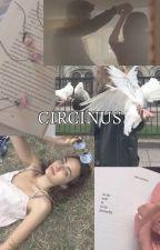 circinus ( criss ) by t-ozier