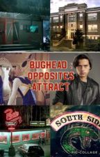 Bughead: opposites attract by floralemi