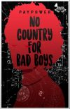 No country for bad boys cover