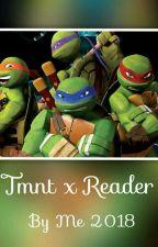 Tmnt X Reader (Insert) by Holly_Rosendale23