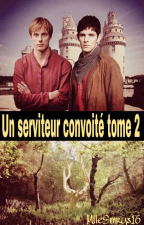 Un serviteur convoité TOME 2 by AikoHell66