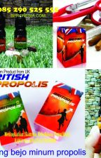 AGEN RESMI !!  , WA +62 852-9052-5555 propolis jakarta by JualBritishPropolis