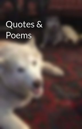 Quotes & Poems by NightmareShenpai