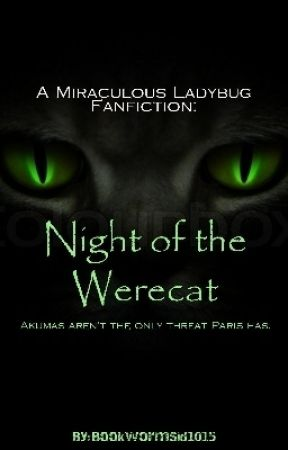 Miraculous Ladybug: Night of The Werecat [Discontinued] by BookwormSid1015