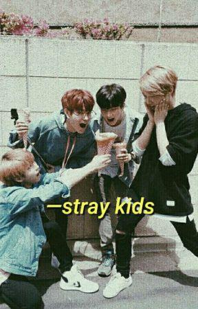 stray kids;; one shots by caroweird