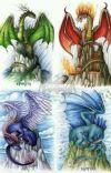 Dragon love cover