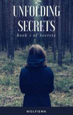 Unfolding Secrets by wolfieMK