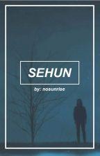 SeHun by nosunrise