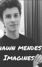 shawn mendes imagines  by paticulartaste_