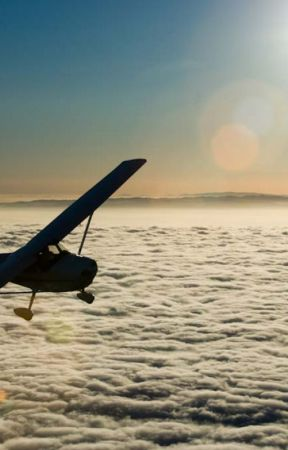 Last Flight by Loufoca_