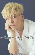 17 Reasons Why I Hate You || Hansol Vernon Chwe by svt24601