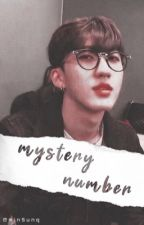 Mystery Number ➸ ChangLix ꪜ by minsunq