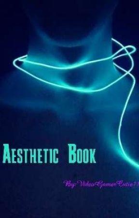 Aesthetic Book by VideoGamerCutie11