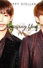 Knowing You (Taekook X Reader) by BTSInfires1230